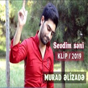 دانلود آهنگ جدید مراد علیزاده به نام سودیم سنی